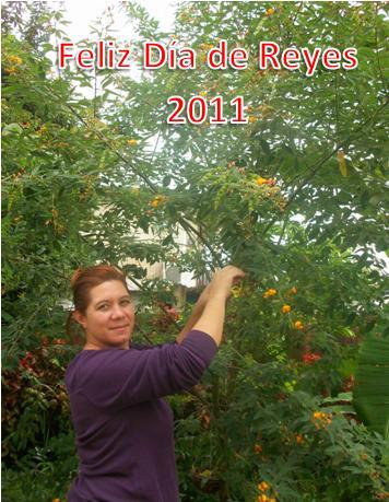 20110104024038-dia-de-reyes.jpg